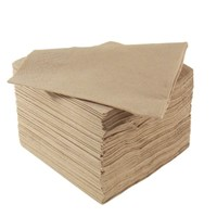 Napkin 40cm 2 Ply Natural Recycled