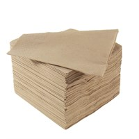 Napkin Cocktail 2Ply 24cm Natural