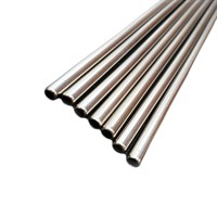 Straw Straight Stainless Steel 21.5cm
