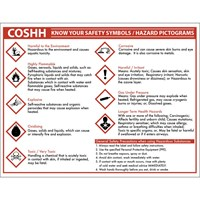 Sign - COSHH know your safety symbols
