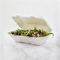 Takeaway Clamshell Bagasse 9x6in