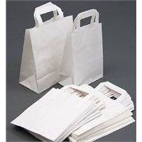 Carrier Bag Paper White  W/handle 8.50 X 4.5x10""